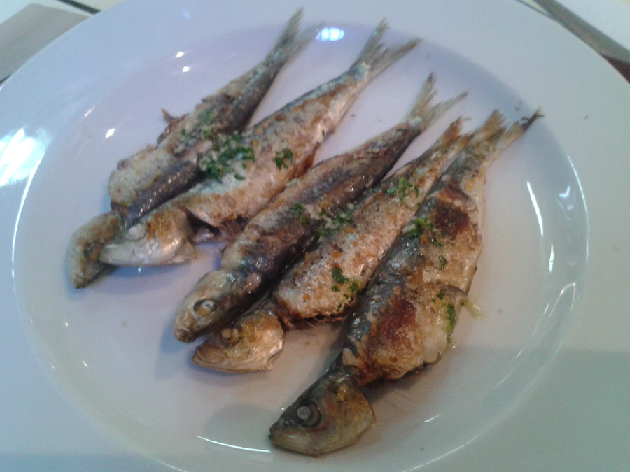 Gelida: sardines